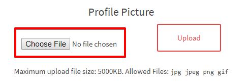Profile Picture Choose File